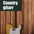 Countrygitarr bokomslag